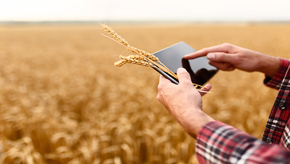 Agriculture apps to improve employee collaboration and productivity
