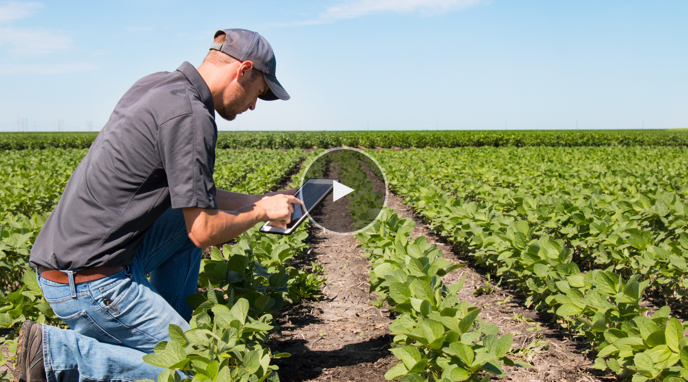 Digitizing the Farming Experience for Your Agribusiness